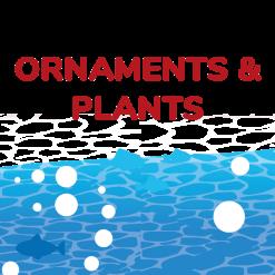 Ornaments & Plants