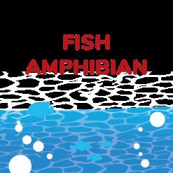 Fish food/ Amphibian